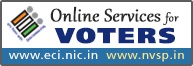 Online Services Voters